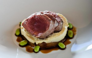 Seared Venison with Celeriac Puree